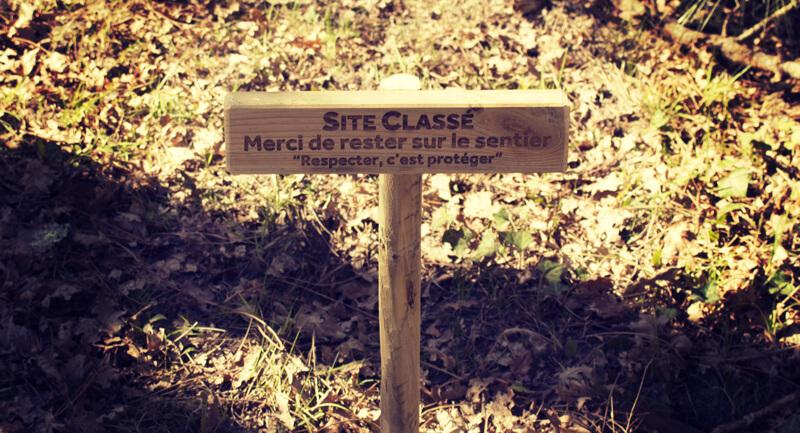T en Leyre - Un parcours accrobranche sur le site protégé du Delta de la Leyre entre Bordeaux et Arcachon